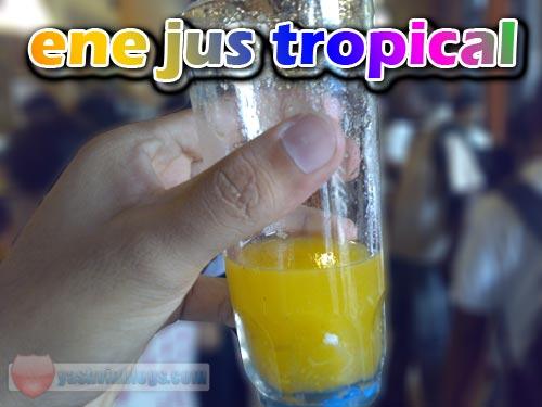 jus-tropical