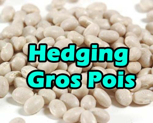 Hedging Gros Pois