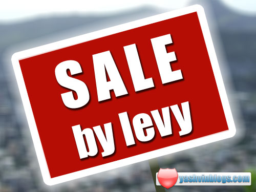 Sale by Levy In Mauritius