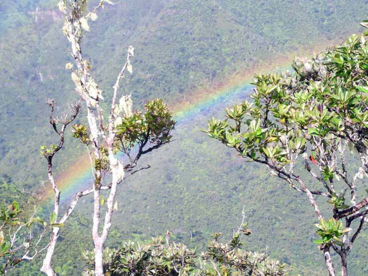 rainbow gorges