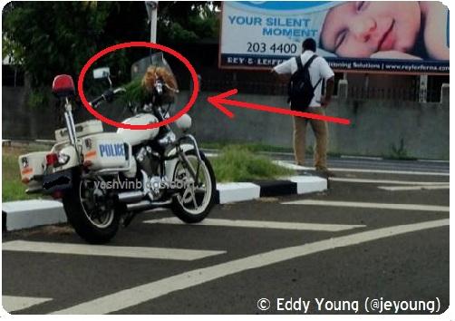 Police Moto - Zoomed