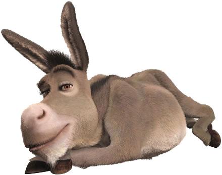 donkey-govt